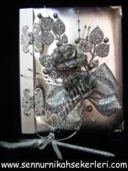 ŞENNUR - Gümüş Anı Defteri 02