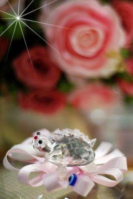 Kristal Kaplumbağa Şeker 33204