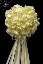ŞENNUR - Orkide El Çiçeği 22