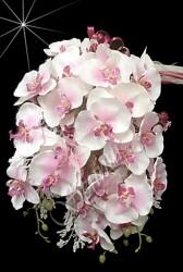 ŞENNUR - Orkide Gelin Çiçeği 49