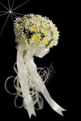 ŞENNUR - Papatya Gelin Çiçeği 54